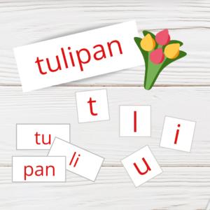 Spotkanie z tulipanem
